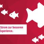 milch & zucker erneuert die Karriere-Website für bonprix